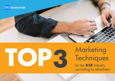 Marketing Techniques for the B2B Industry according to eMarketer